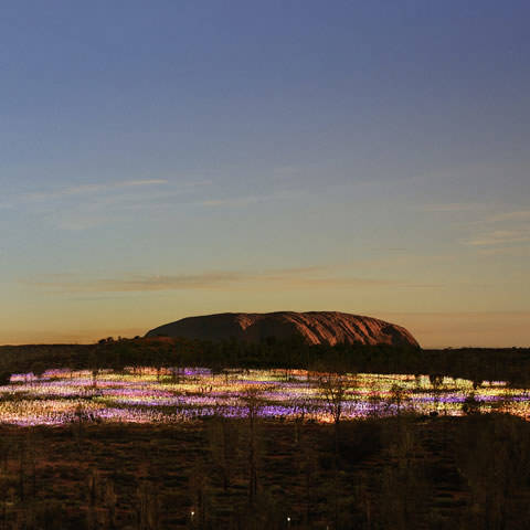 Best of Uluru Packages