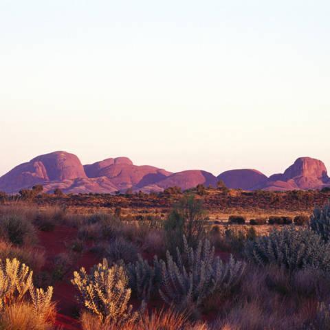 Best of Uluru Packages with Flights